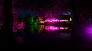 lake lighting